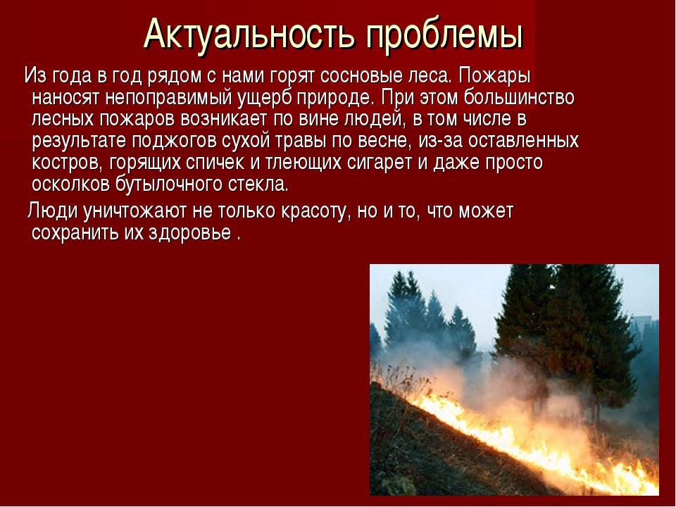 Актуальность проблемы Из года в год рядом с нами горят сосновые леса. Пожары...