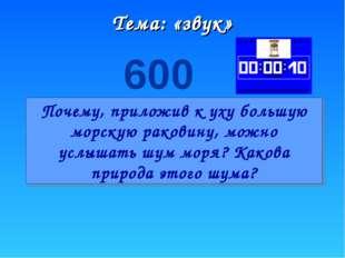 Тема: «звук» 600 Почему, приложив к уху большую морскую раковину, можно услыш