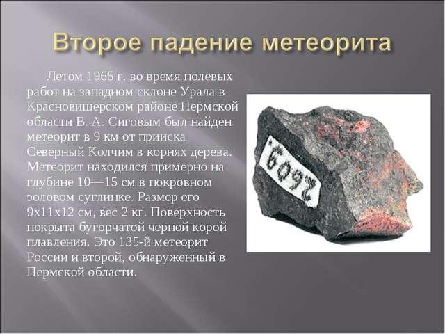 Летом 1965 г. во время полевых работ на западном склоне Урала в Красновишерск...