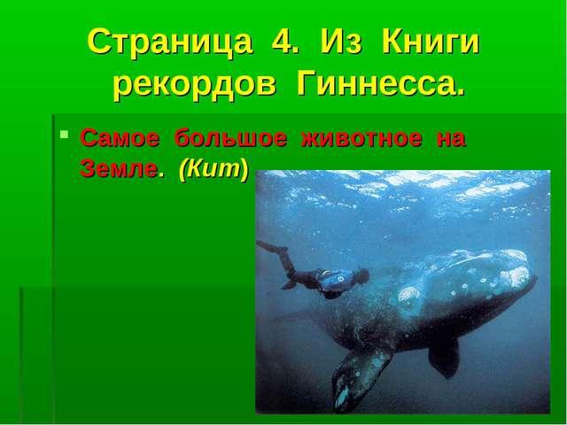 Страница 4. Из Книги рекордов Гиннесса. Самое большое животное на Земле. (Кит)
