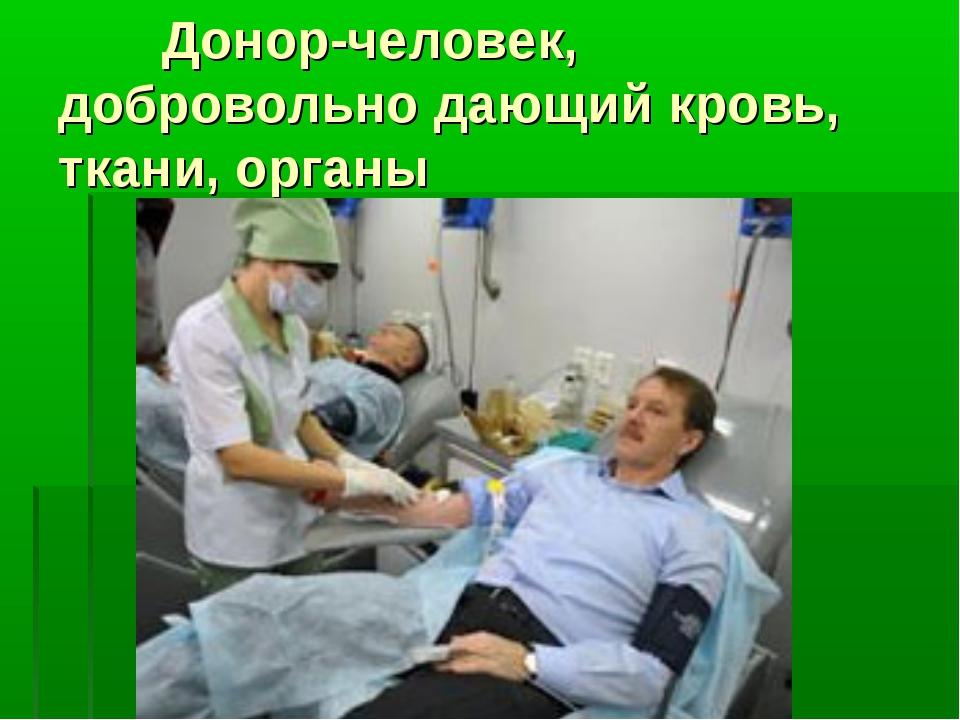 Донор-человек, добровольно дающий кровь, ткани, органы