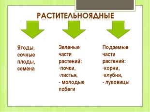 Ягоды, сочные плоды, семена Зеленые части растений: почки, листья, - молодые