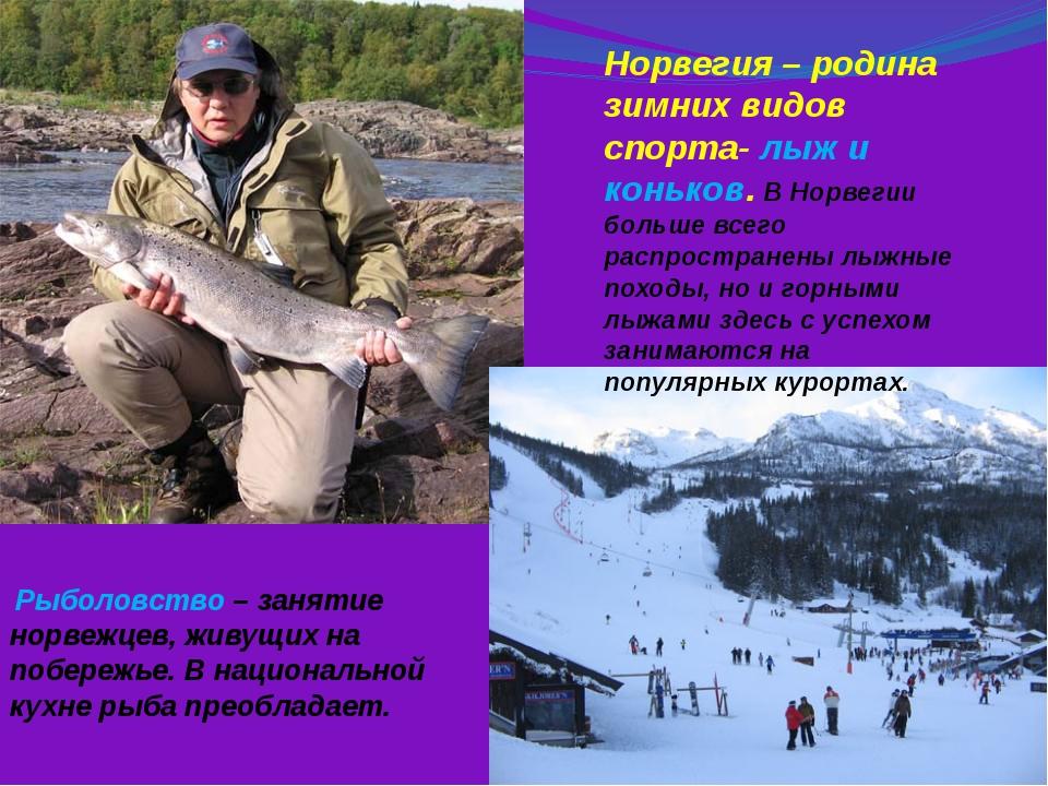 Рыболовство – занятие норвежцев, живущих на побережье. В национальной кухне...