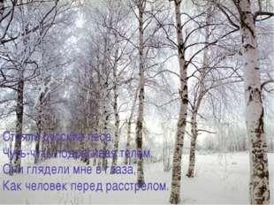 Стояли русские леса, Чуть-чуть подрагивая телом. Они глядели мне в глаза, Как