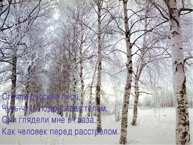 Стояли русские леса, Чуть-чуть подрагивая телом. Они глядели мне в глаза, Как...