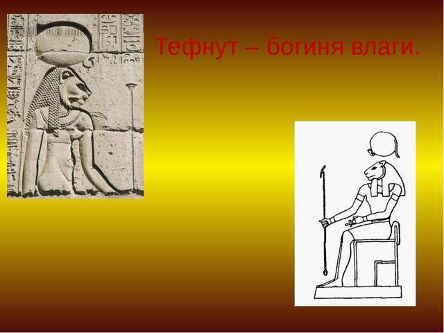 Тефнут – богиня влаги.