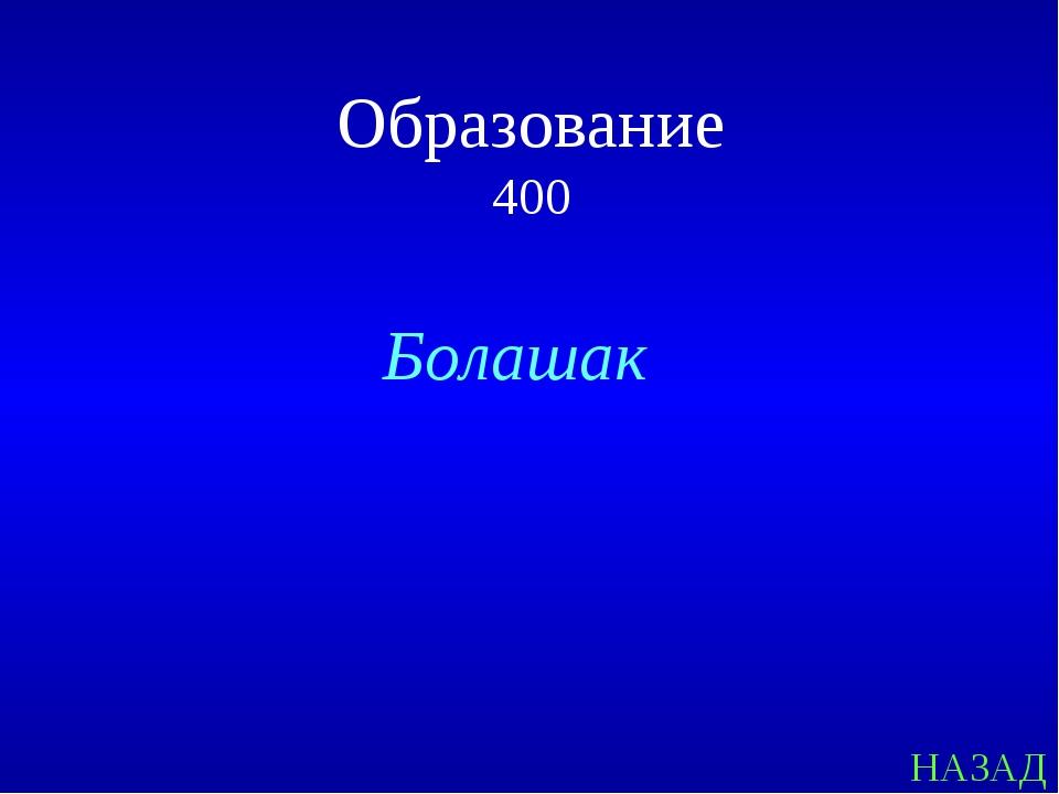 НАЗАД Образование 400 Болашак
