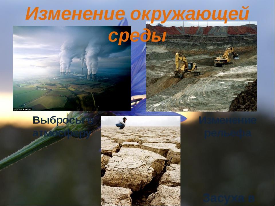 Изменение окружающей среды Выбросы в атмосферу Изменение рельефа Засуха в Кит...