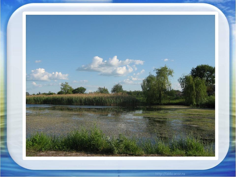 - веселому прибою чистого моря и полноводным рекам