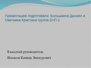 Презентацию подготовили: Большаков Даниил и Овечкина Кристина группа 2НП-1 Кл