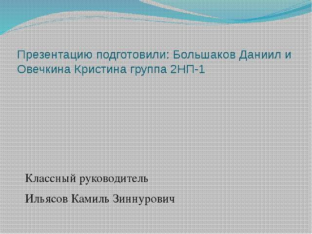 Презентацию подготовили: Большаков Даниил и Овечкина Кристина группа 2НП-1 Кл...