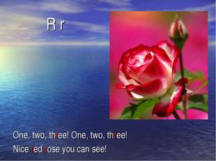 R r One, two, three! One, two, three! Nice red rose you can see!