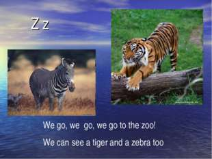 Z z We go, we go, we go to the zoo! We can see a tiger and a zebra too