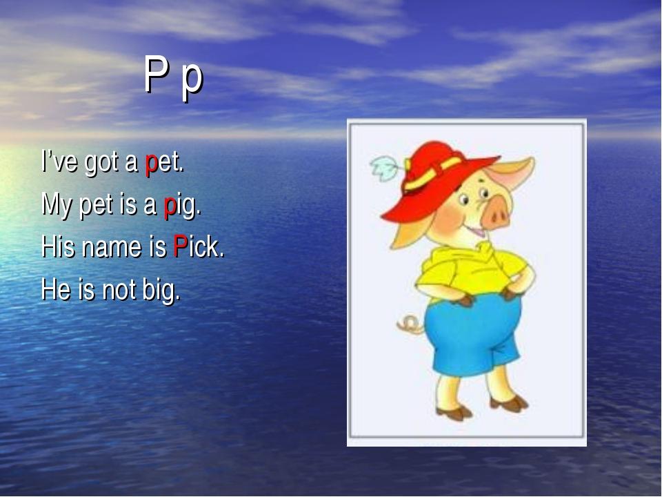 P p I've got a pet. My pet is a pig. His name is Pick. He is not big.