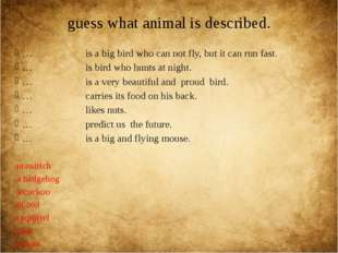 guess what animal is described. … is a big bird who can not fly, but it can r