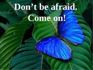 Don't be afraid. Come on!