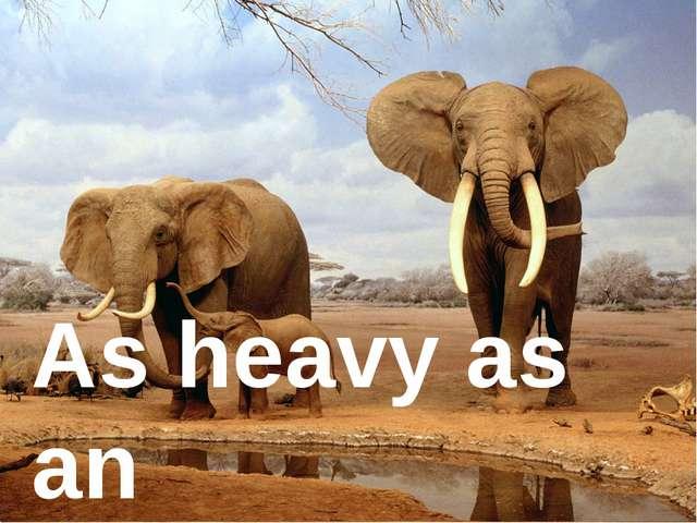 As heavy as ... As heavy as an elephant