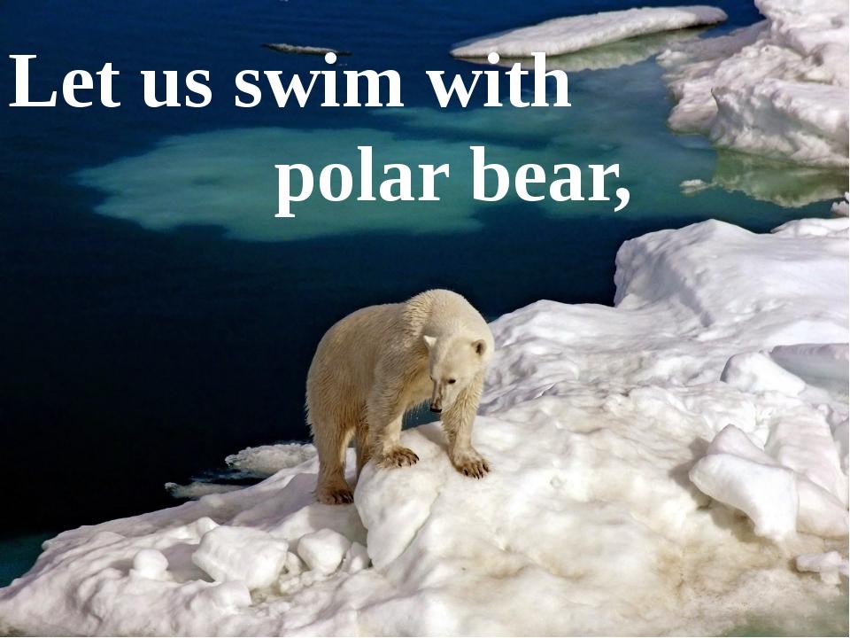 Let us swim with polar bear,