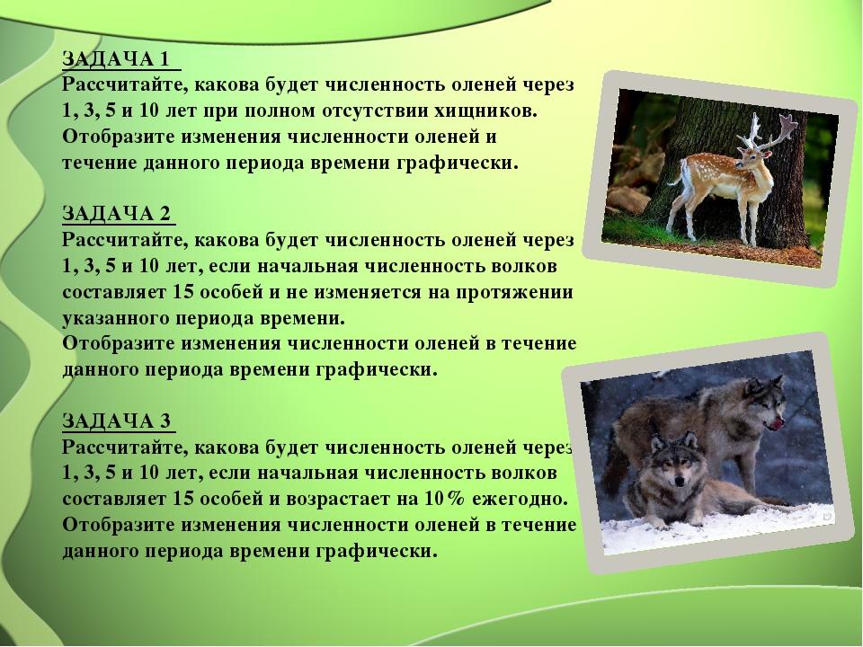 ЗАДАЧА 1 Рассчитайте, какова будет численность оленей через 1, 3, 5 и 10 лет...
