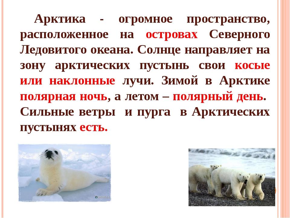 Арктика - огромное пространство, расположенное на островах Северного Ледовит...