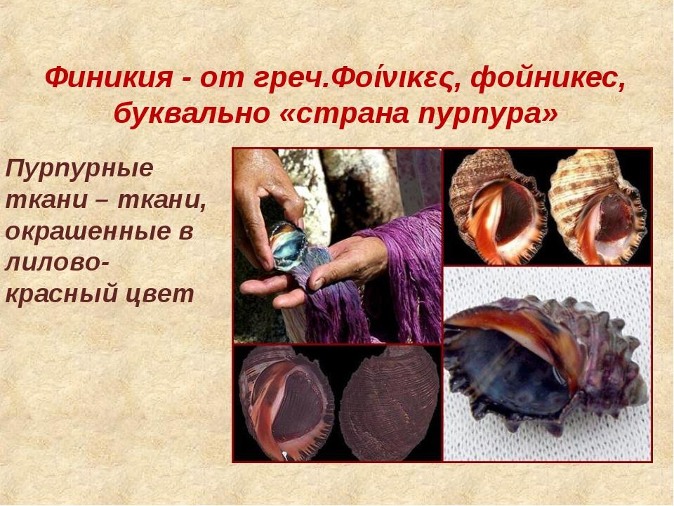 Финикия- от греч.Φοίνικες, фойникес, буквально «страна пурпура» Пурпурные тк...