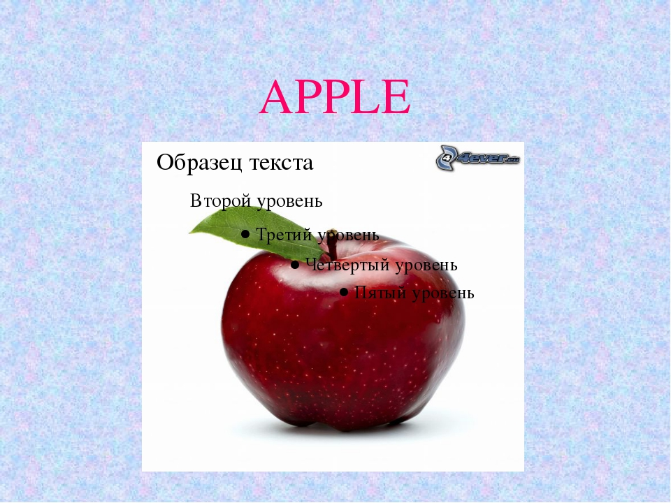 APPLE 11.10.10