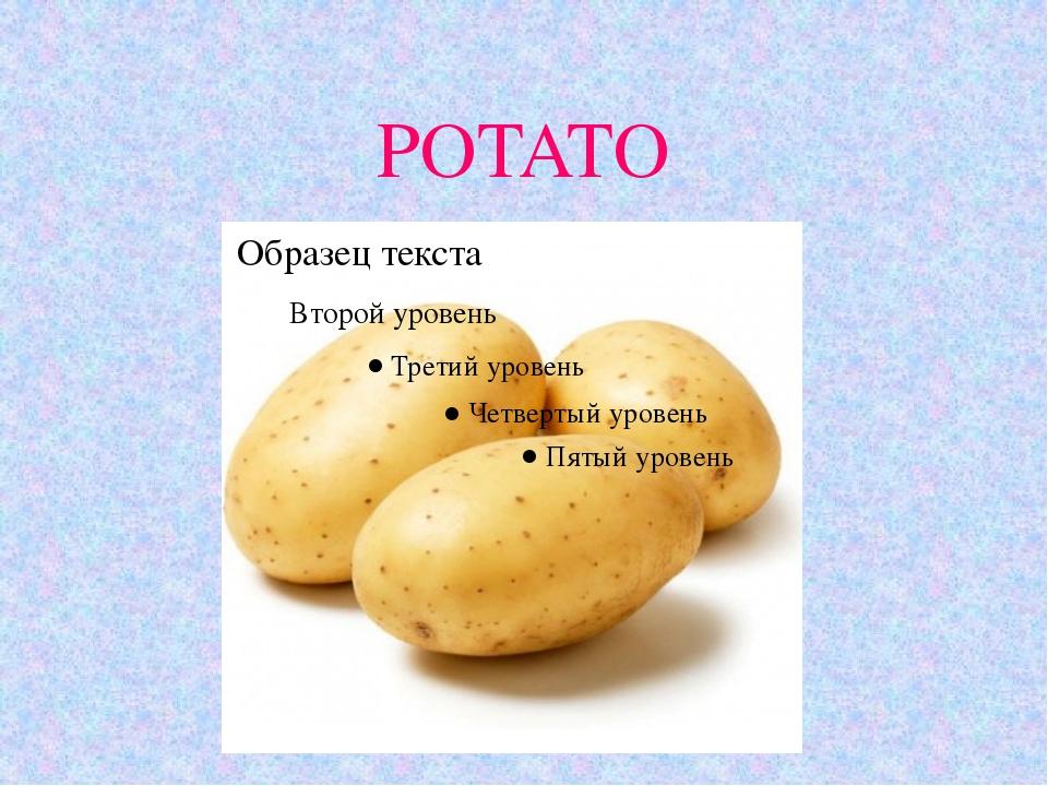 POTATO 11.10.10