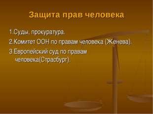 Защита прав человека 1.Суды, прокуратура. 2.Комитет ООН по правам человека (Ж