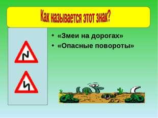 «Змеи на дорогах» «Опасные повороты»