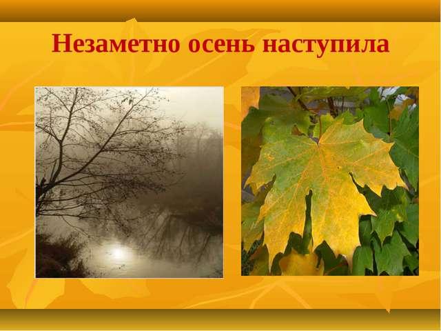 Незаметно осень наступила