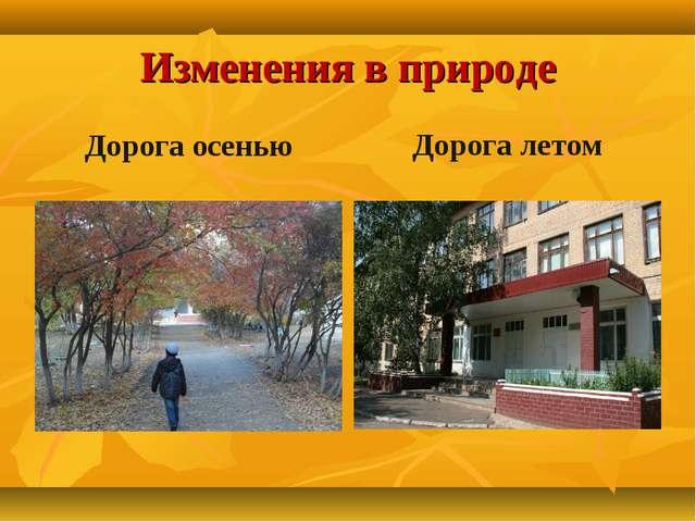 Изменения в природе Дорога осенью Дорога летом