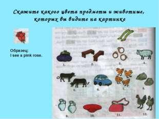Скажите какого цвета предметы и животные, которых вы видите на картинке Образ