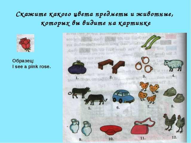 Скажите какого цвета предметы и животные, которых вы видите на картинке Образ...