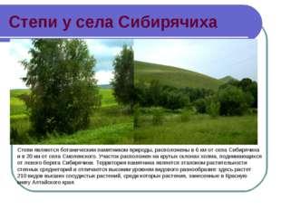 Степи у села Сибирячиха Степи являются ботаническим памятником природы, распо