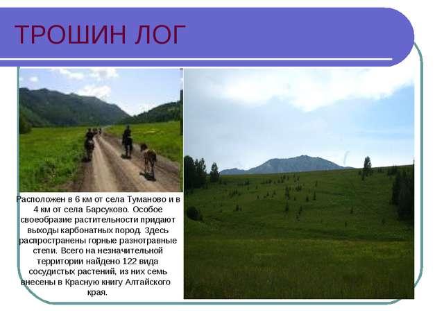 ТРОШИН ЛОГ Расположен в 6 км от села Туманово и в 4 км от села Барсуково. Осо...