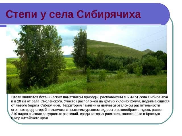Степи у села Сибирячиха Степи являются ботаническим памятником природы, распо...