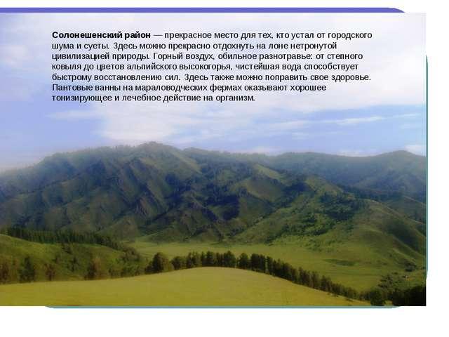Солонешенский район — прекрасное место для тех, кто устал от городского шума...
