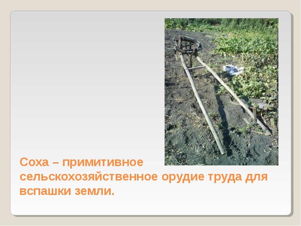 Соха – примитивное сельскохозяйственное орудие труда для вспашки земли.