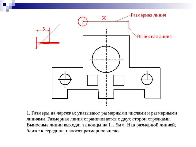 1. Размеры на чертежах указывают размерными числами и размерными линиями. Раз...