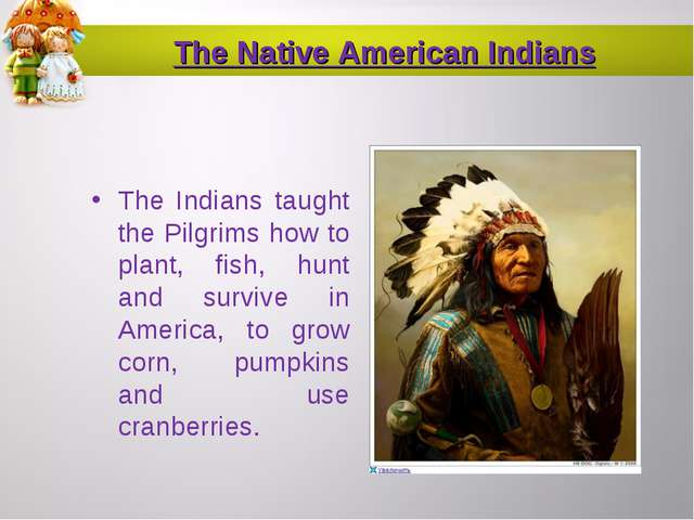 The Native American Indians The Indians taught the Pilgrims how to plant, fis...