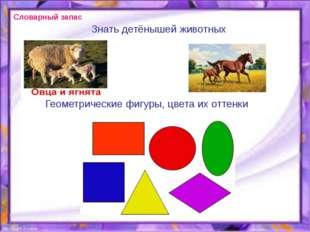 Знать детёнышей животных Геометрические фигуры, цвета их оттенки Словарный за