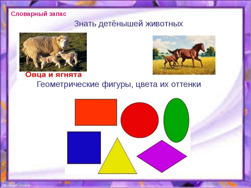 Знать детёнышей животных Геометрические фигуры, цвета их оттенки Словарный за...