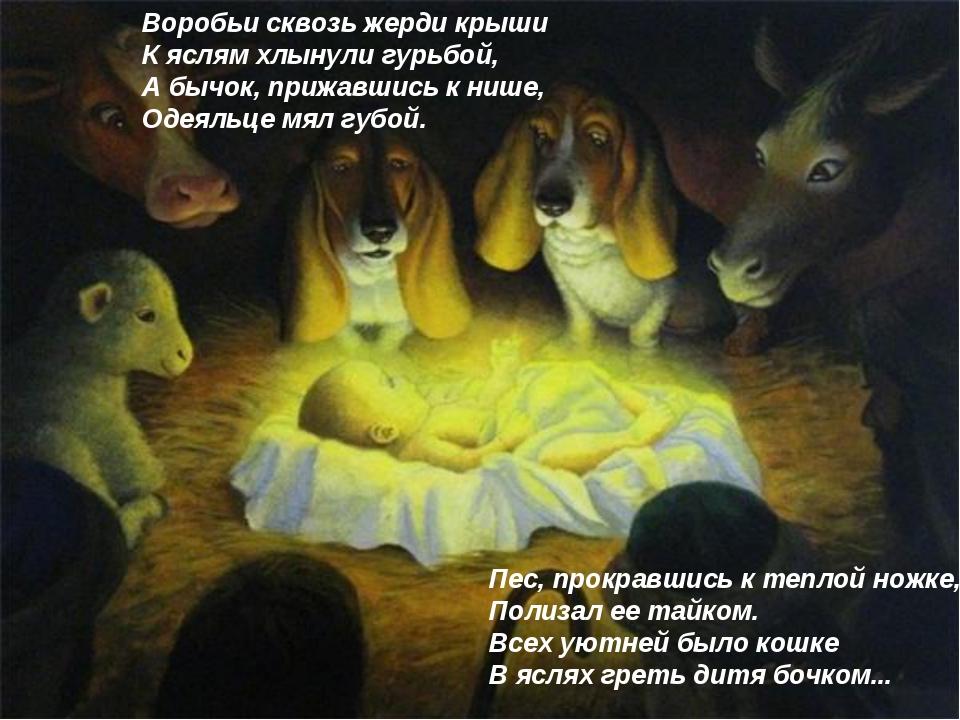Воробьи сквозь жерди крыши К яслям хлынули гурьбой, А бычок, прижавшись к ниш...