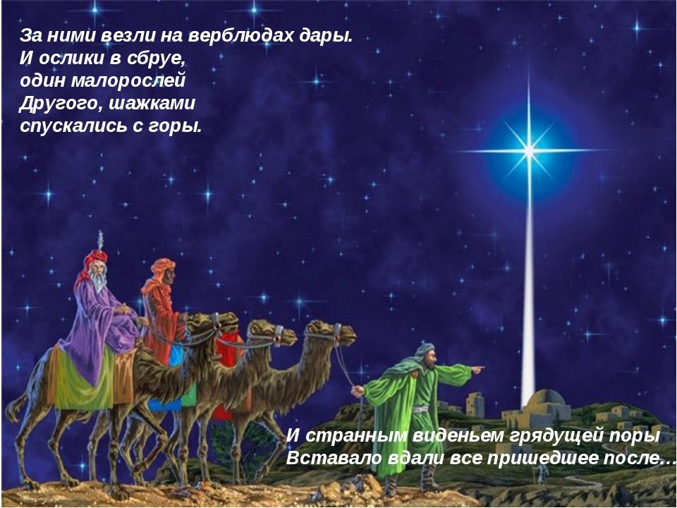 За ними везли на верблюдах дары. И ослики в сбруе, один малорослей Другого, ш...