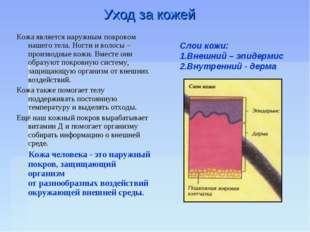 Уход за кожей Слои кожи: 1.Внешний – эпидермис 2.Внутренний - дерма Кожа явля