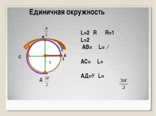 А В С Д L=2πR R=1 L=2π АВ=⅟₄L=ⁿ∕₂ АС=⅟₂L=π АД=³∕₄ L= π 2π Единичная окружнос