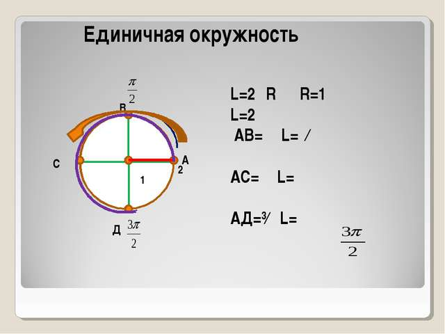 А В С Д L=2πR R=1 L=2π АВ=⅟₄L=ⁿ∕₂ АС=⅟₂L=π АД=³∕₄ L= π 2π Единичная окружнос...