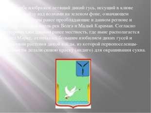 На гербе изображен летящий дикий гусь, несущий в клюве растение вайду над во