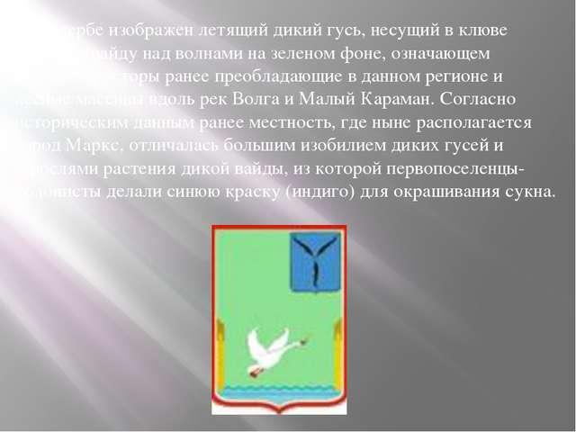 На гербе изображен летящий дикий гусь, несущий в клюве растение вайду над во...