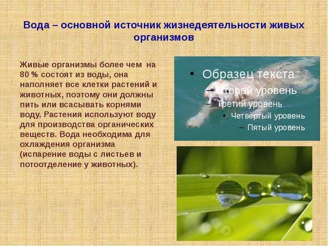 Вода – основной источник жизнедеятельности живых организмов Живые организмы б...